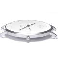 watchcase_silver_online